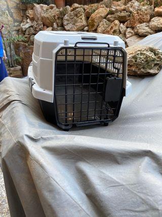 Transportin de Gato