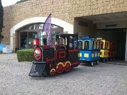 Tren eléctrico