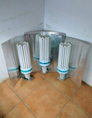 Bombillas CFL