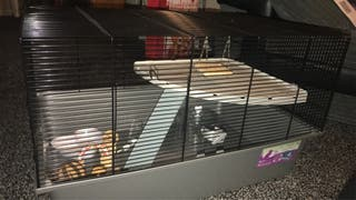 Extra large gerbil cage