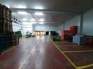 Nave industrial en venta en Avda. Cataluña en Zaragoza