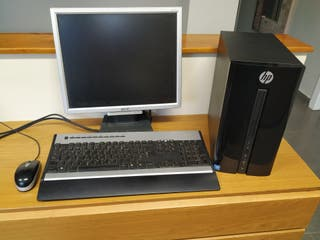 ordenador + monitor + teclado y ratón