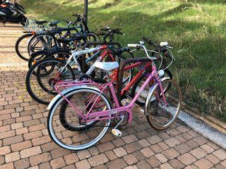 Bicicleta BH Rosa Antigua