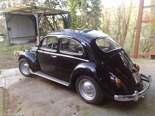 Volkswagen Escarabajo 2019