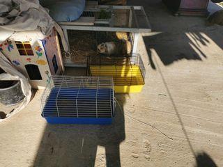 2 jaulas conejos