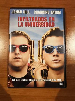 DVD INFILTRADOS EN LA UNIVERSIDAD