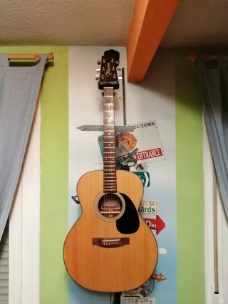 Guitarra TAKAMINE G220-NS