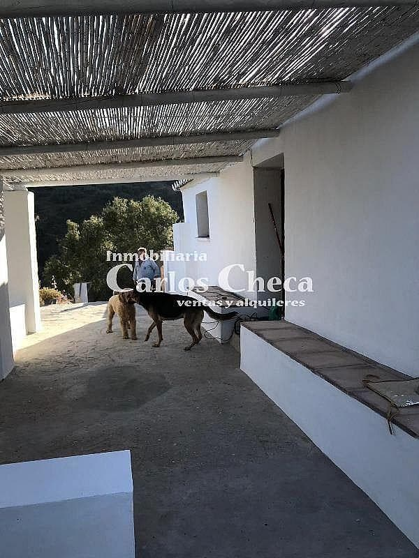 Chalet en alquiler en Sayalonga (Sayalonga, Málaga)