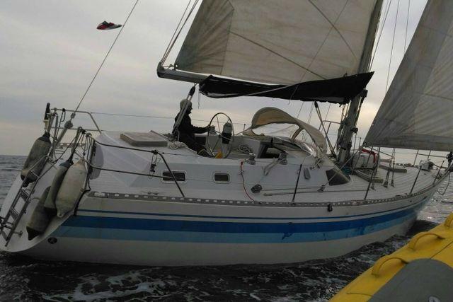Velero Northwind Mistral 36