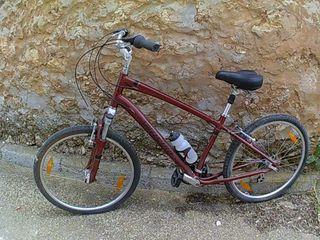 Bicicleta de paseo (Hombre)