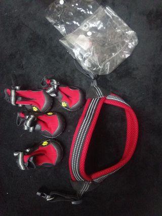 botas perro para la nieve o suelos con pinchos