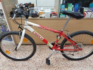 "Bicicleta AGECE, 24"""