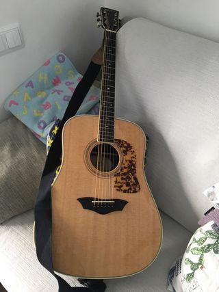 Guitarra acustica WASHBURN D64SWK