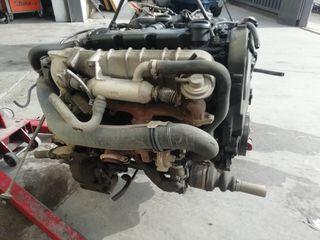 motor rhy