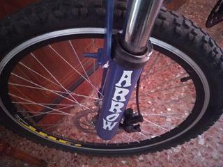 Montanbike Arrow Descenso