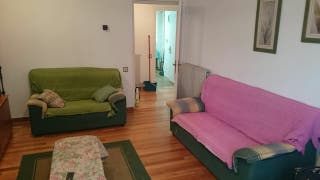 dos sofas de dos plazas