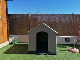 caseta de perro grande