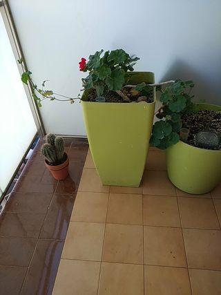 jardinera autorriego