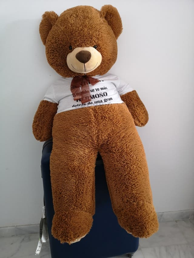 lindo oso de peluche gigante