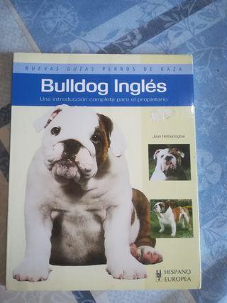 libro nuevo bulldog inglés