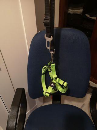 Arnés para perros y correa cinturón de seguridad