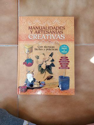 Libro manualidades