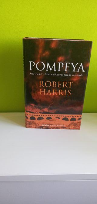 Libro Pompeya