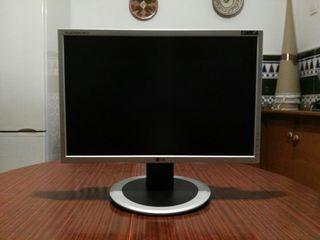 Monitor LG Flatron Wide L194WT 19''