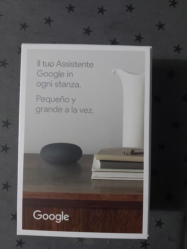 Google next mini