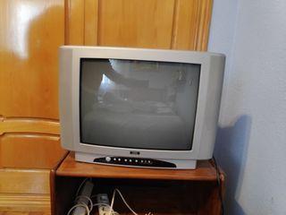 """Televisor SEG 21"""" (51 cm) + TDT PHILIPS"""