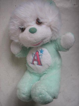 oso angeloso de Vir