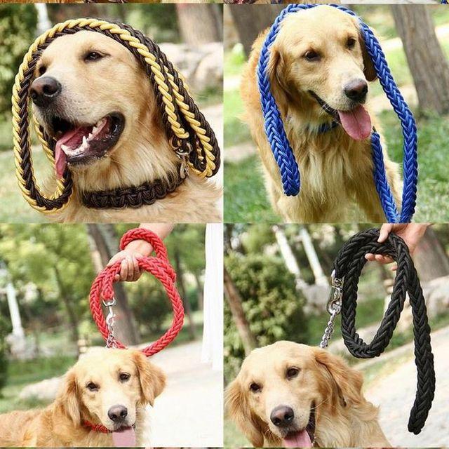 Dog lead