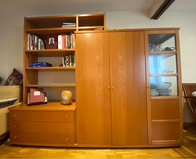 Mueble salón integra armario ropero