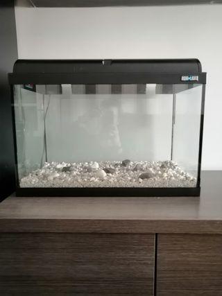 acuario de 80 litros