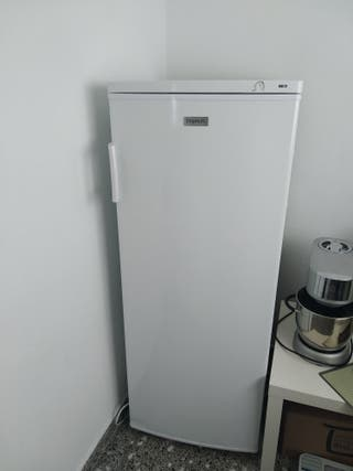 Congelador vertical Frigelux CG180A+