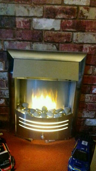 Electric chrome effect fire insert