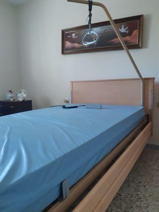 cama Geriátricas