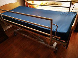 cama articulada con carro elevador ( geriátrica)