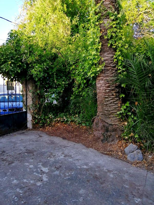 Casa en venta (Ronda, Málaga)