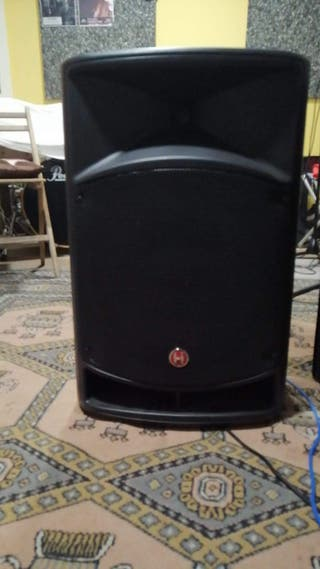 OFERTA VERANO Equipo sonido PA 800W, 2 altavoces