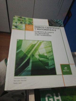 Ambito científico matemático II