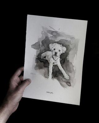 Se hacen retratos de tu mascota!!