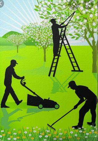 se ofrece jardinero o mantenimiento de chalet