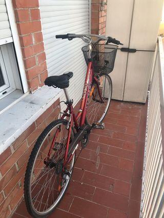 Bicicleta de aluminio Americana