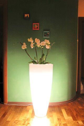 Maceteros con luz muy resistentes