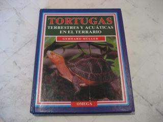 Tortugas terrestres y acuáticas en el terrario