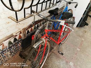 bicicleta de paseo tortor handmade