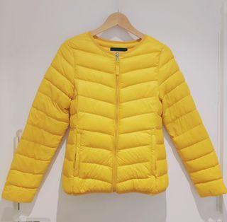 plumifero corto amarillo