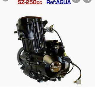 motor pit bike zongshen 250 por agua