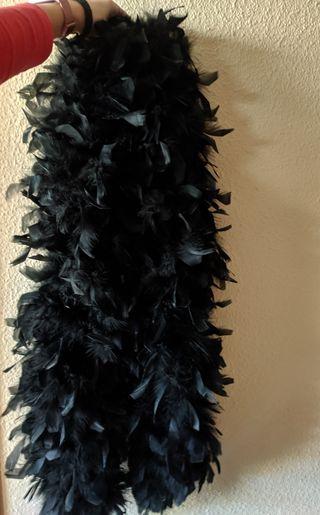 boa plumas